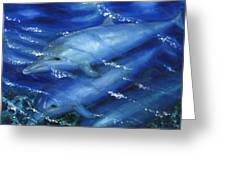 Dolphins Swimming Greeting Card