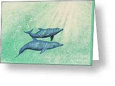 Dolphins Greeting Card by Wayne Hardee