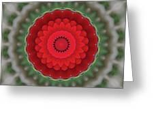 Don Juan Kaleidoscope Carnation Greeting Card