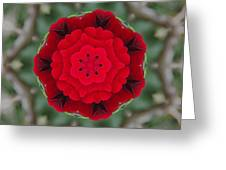 Don Juan Rose Poppies Kaleidoscope Greeting Card