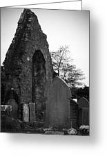 Donegal Abbey Ruins Donegal Ireland Greeting Card