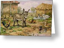 Donkey And Farmyard Fowl  Greeting Card