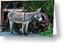 Donkey And Old Tractor Greeting Card