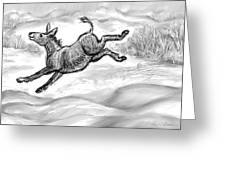 Donkey Frolicking In The Snow Greeting Card