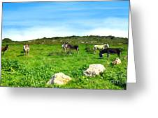 Donkeys Under A Blue Sky In Green Hills Greeting Card