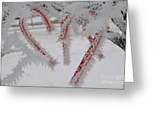 Don't Break My Heart-unique And Rare Formation Of Spiked Snow Icicles  Greeting Card