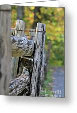 Don't Fence Me In Greeting Card