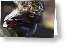 Dont Mess With The Emu Greeting Card
