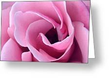 Doorway Of Rose Greeting Card