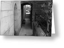 Doorway One Greeting Card