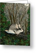 Dormouse In Ivy Greeting Card