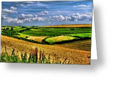 Dorset Farmland Greeting Card