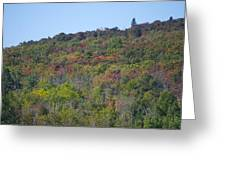 Dots Of Fall Colors Greeting Card