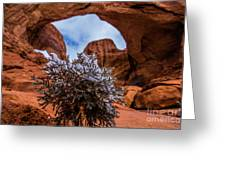 Double Arch Winter Greeting Card