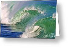 Double Barrel Greeting Card by Paul Topp