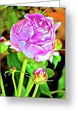 Double Blooms Greeting Card