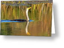 Double-crested Cormorant - 2 Greeting Card