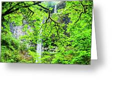Double Falls 2 Greeting Card