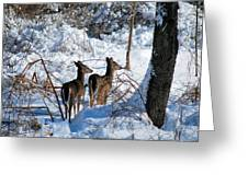 Double Look Greeting Card