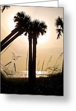 Double Palms Greeting Card