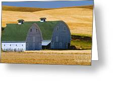 Double Palouse Barns I Greeting Card