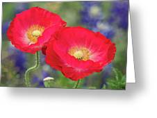 Double Take-two Red Poppies. Greeting Card