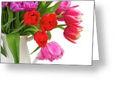 Double Tulips Bouquet Greeting Card