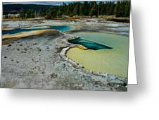 Doublet Pool Hot Spring In Yellowstone Greeting Card