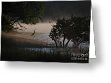 Douglas Lake Greeting Card