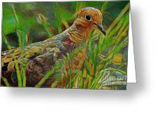 Dove Painterly Greeting Card