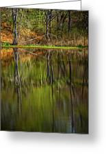 Down At Pecks Pond Greeting Card
