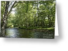 Down Beside Where The Waters Flow Greeting Card