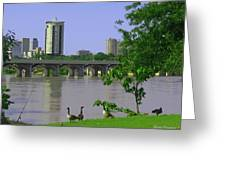 Down By The River Greeting Card