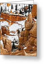 Down Into The Canyon Greeting Card