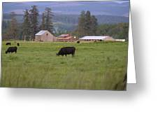 Down On The Farm Greeting Card by Angi Parks