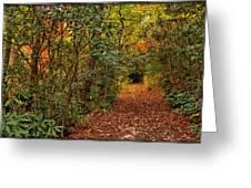 Down The Mountain Path Greeting Card