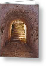 Down To The Cellar Greeting Card