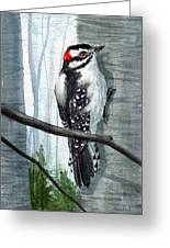 Downey Woodpecker Greeting Card