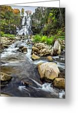 Downstream From Chittenango Falls Greeting Card