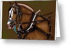 Draft Horse Greeting Card