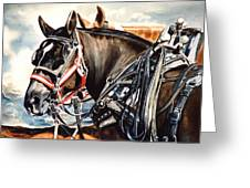 Draft Mules Greeting Card by Nadi Spencer