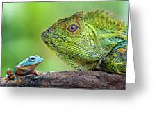 Dragon Forest And Frog Greeting Card