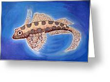 Dragonet Fish Greeting Card