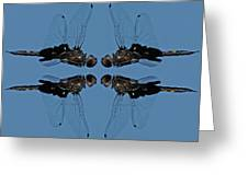 Dragonfly Composite Color Greeting Card