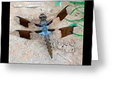 Dragonfly In The Sand Greeting Card