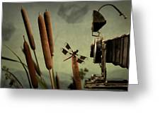 Dragonfly Greeting Card by Mark Wagoner