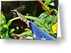 Dragonfly On Flag Greeting Card