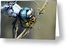 Dragonfly With Yellowjacket 4 Greeting Card