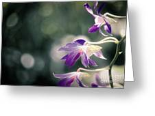 Dragons In The Orchids Greeting Card