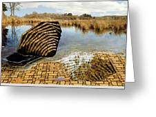 Drain - Mendon Ponds Greeting Card